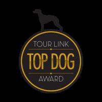 Top Dog Logo Design